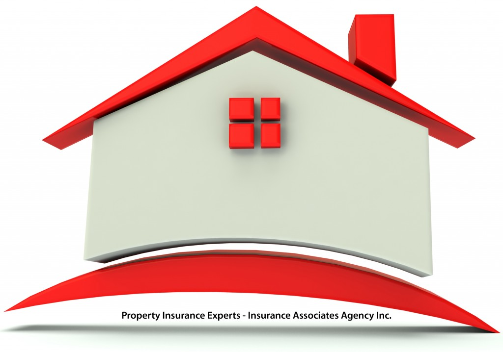 Property Insuance Expert