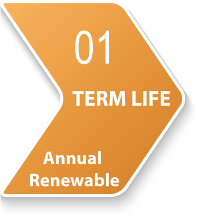 Annual Renewable Term Life Insurance 45069
